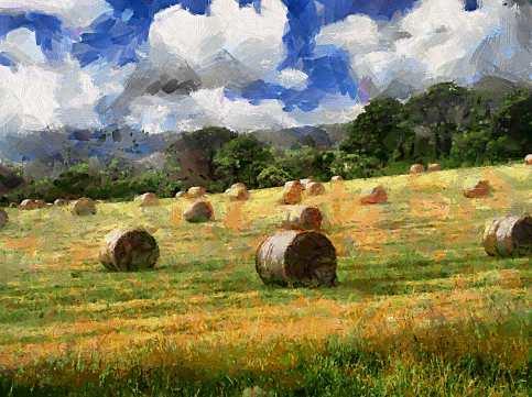 Hayballs_Landscape