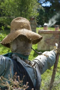 Even the scarecrows are content.